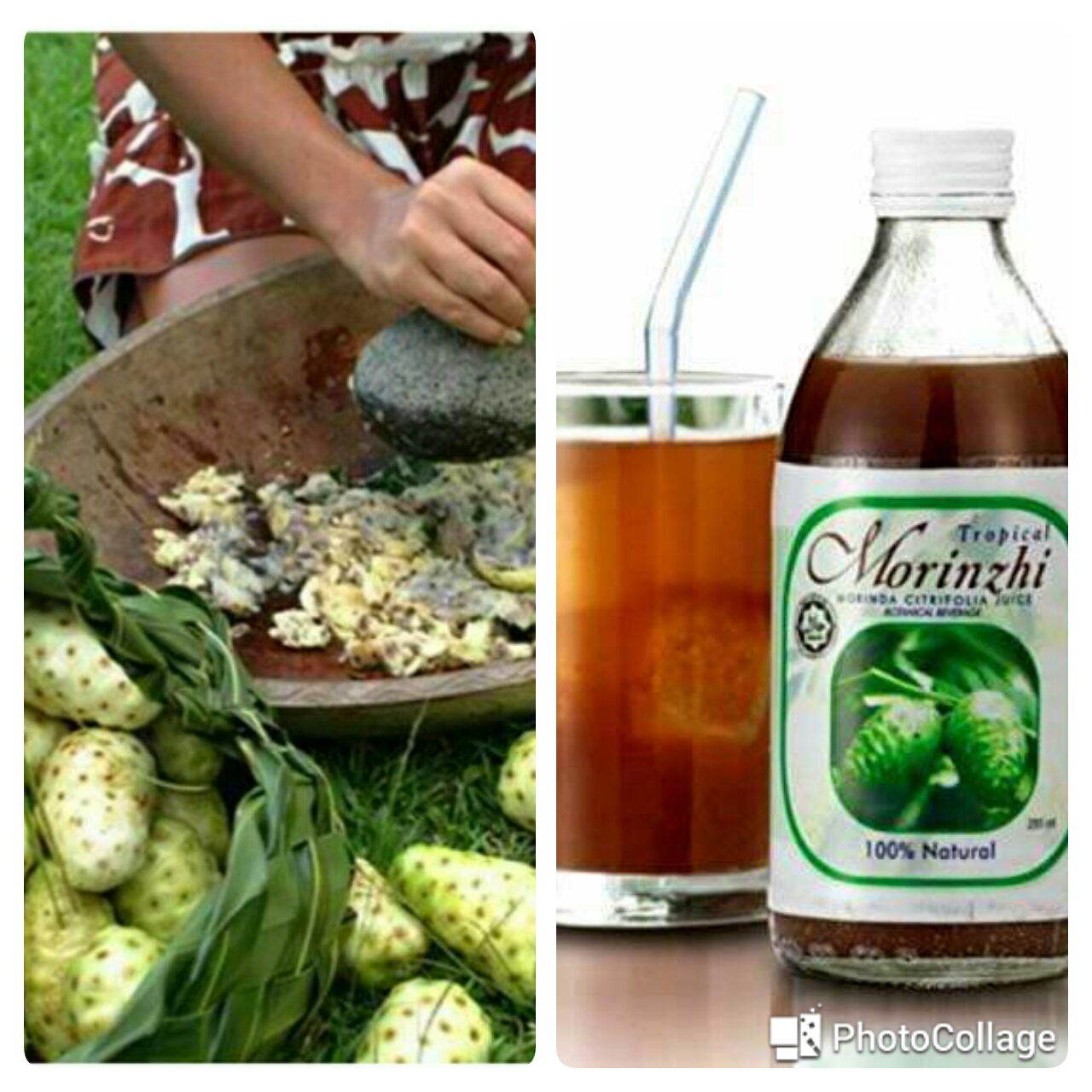 benefits of drinking noni juice, anti -cancer miracle herb